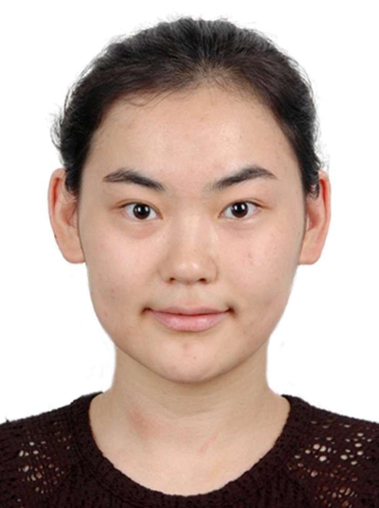ZHANG Yingchen